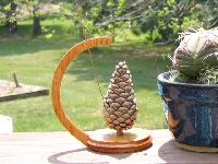 Fire Safety Pine Cone 1